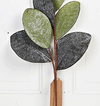 Frosted Magnolia Pick