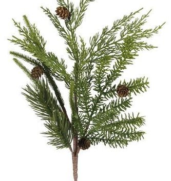 Mixed Pine Juniper Spray