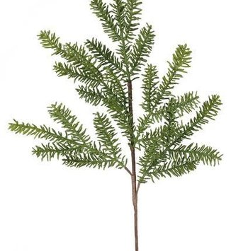 "26"" Noble Fir Spray"