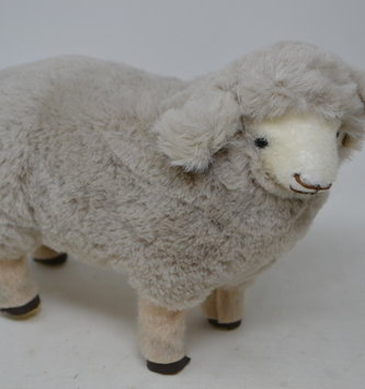 Standing Woodland Sheep