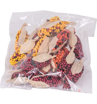 Bag of Mini Indian Corn