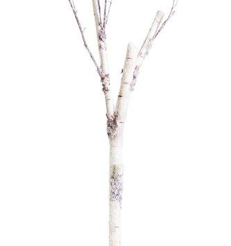 """83"""" Birch Branch"""