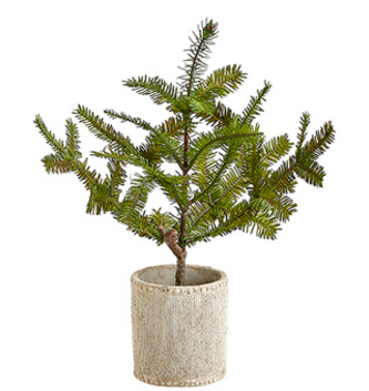 "14"" Potted Pine Tree"