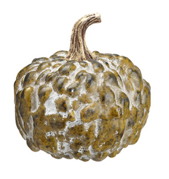 Bumpy Green Pumpkin