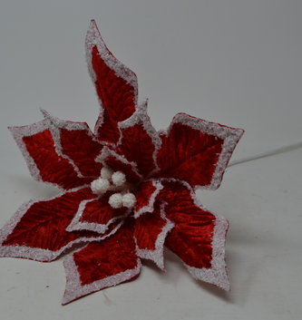Snowy Red Velvet Poinsettia Stem