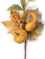 Fall Pumpkin Berry Pick