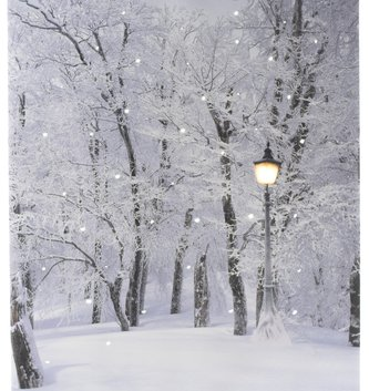 LED Lamp Post Winter Forest Canvas