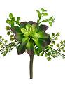 """11"""" Succulent Fern Pick"""