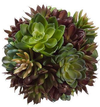 """6"""" Green Burgundy Succulent Ball"""