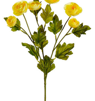 "26"" Ranunculus Spray (5-Colors)"