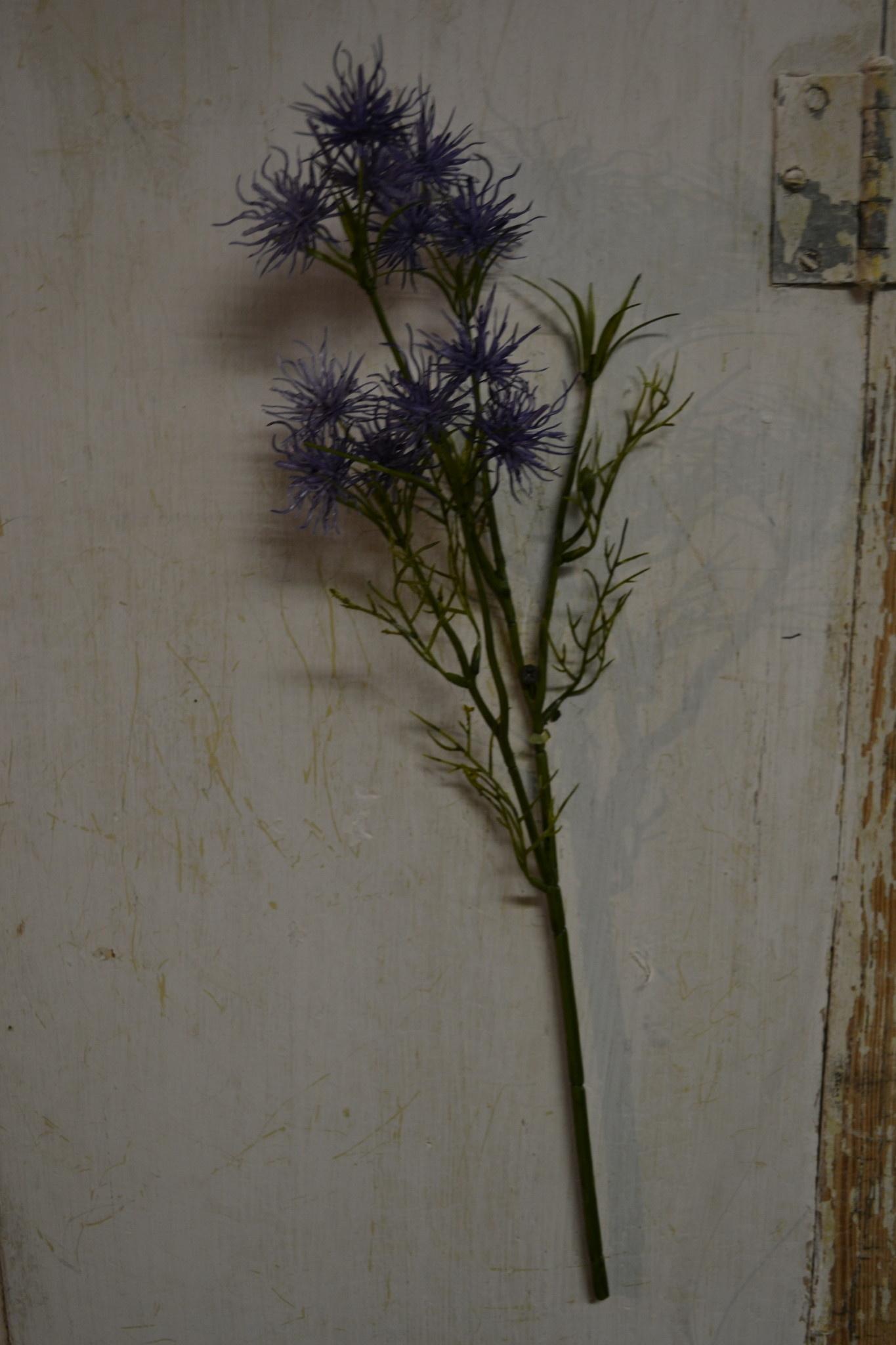 Purple Witch Hazel Spray