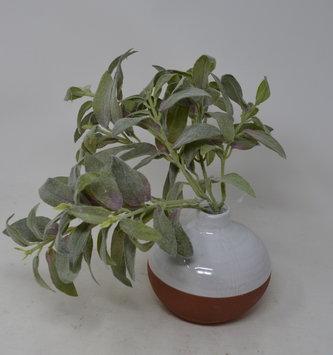 """11"""" Sage Foliage Pick"""