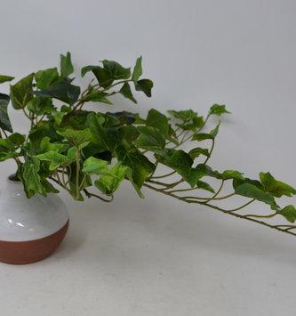 "22"" Green Ivy Foliage Bush"