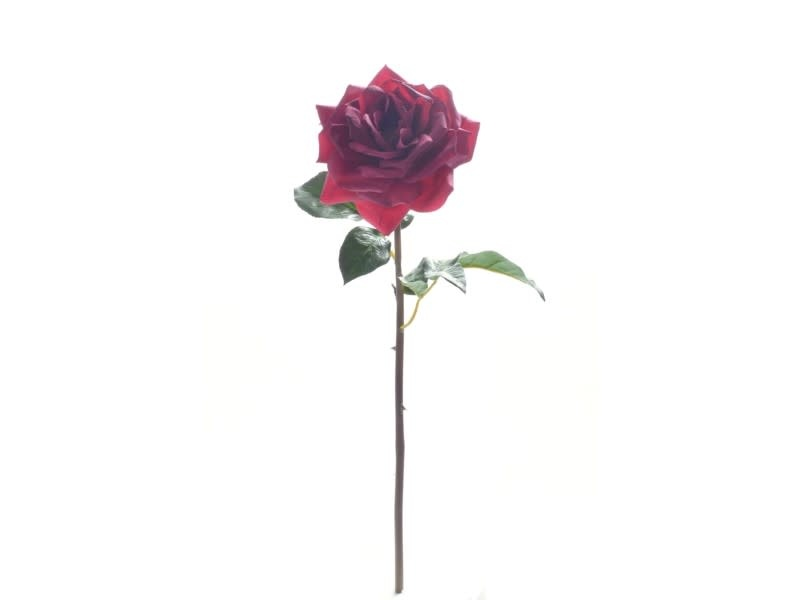Natural Touch Westminster Rose (3 Colors)