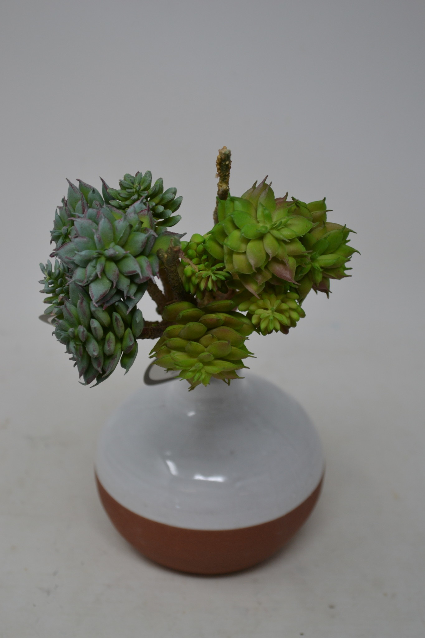 "10.5"" Succulent Branch Pick (2 Colors)"