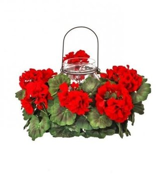 Red Geranium Glass Candle Holder