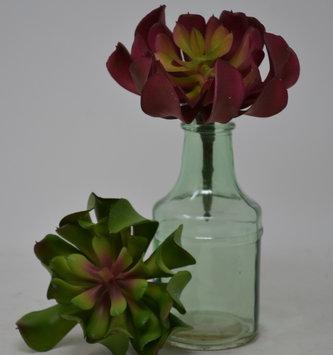 """5"""" Succulent Plant Pick (2-Colors)"""