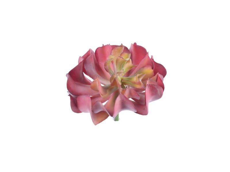 "5"" Succulent Plant Pick (2-Colors)"