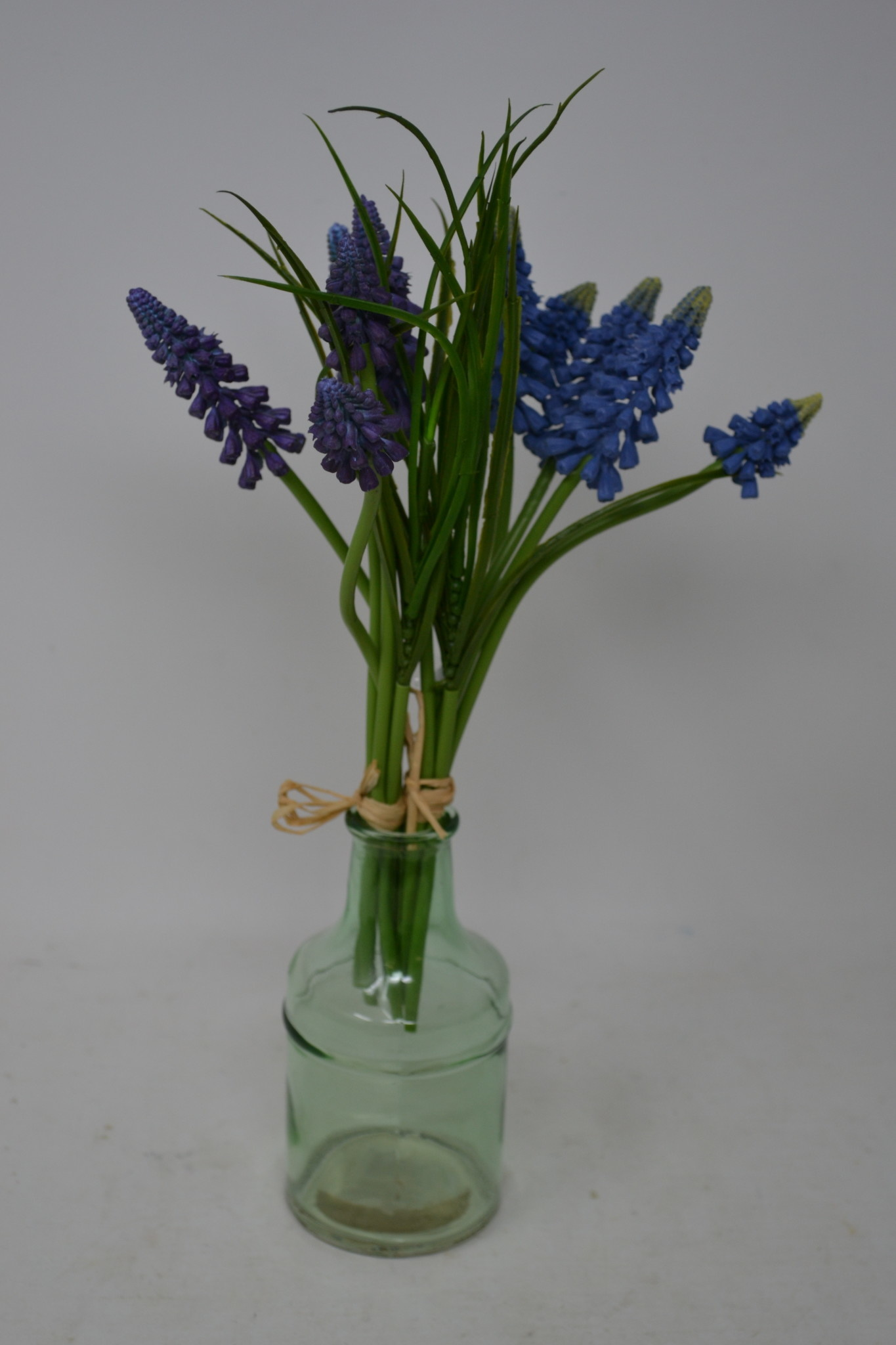 Muscari Bundle (2-Colors)