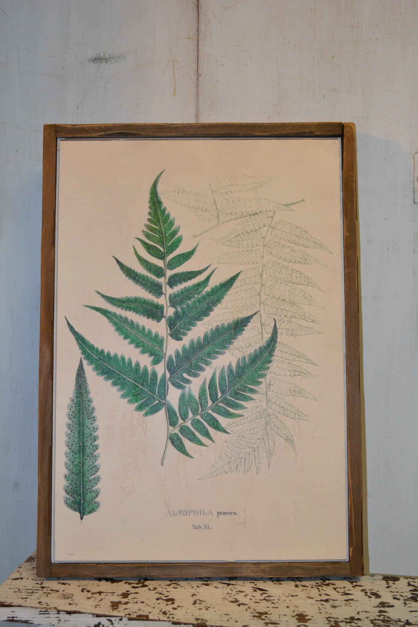Botanical Wood Framed Fern Wall Art (2-Styles)