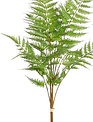 "29"" Fern Stem Pick (2-Styles)"