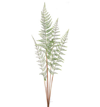 "49.5"" Wild Fern Spray"