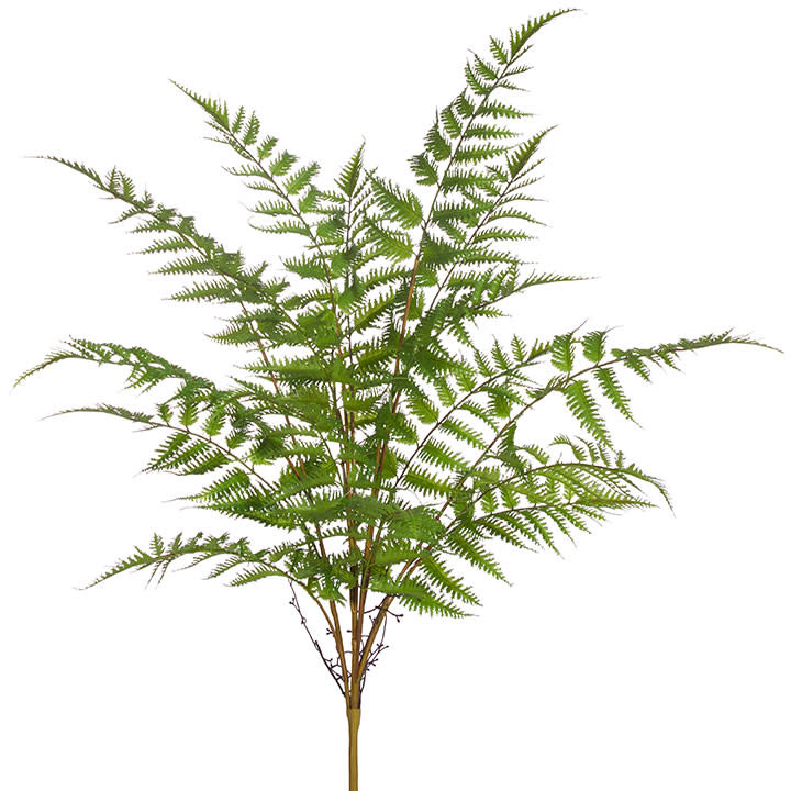 "30"" Forest Fern Bush"
