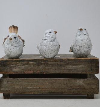 White & Tan Birds (3-Styles)