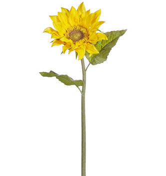 Natural Touch Sunflower Stem