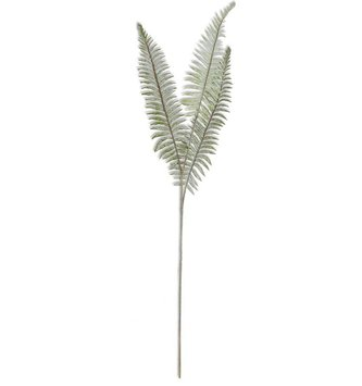 "36"" Dusty Boston Fern Pick"