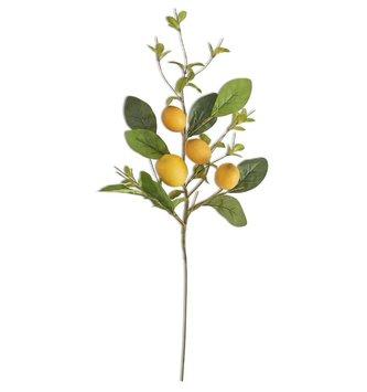 "28"" Lemon & Foliage Spray"