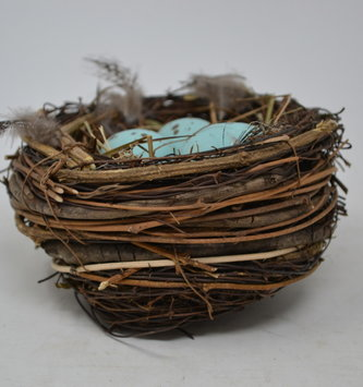 Nest with Speckled Feathers & Eggs