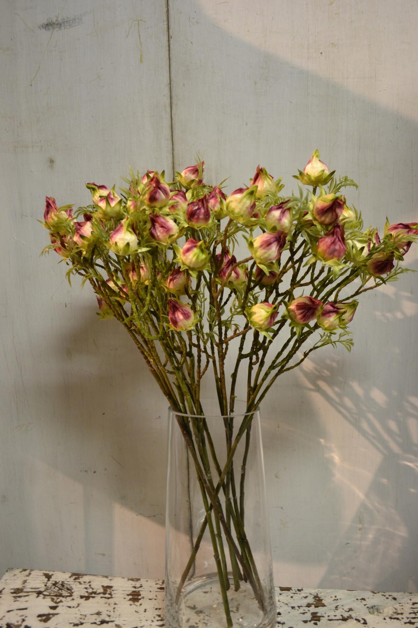Burgundy Hibiscus Pod Spray