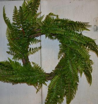 "26"" Mixed Green Fern Wreath"