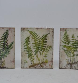 Vintage Fern Mini Block Print (3-Styles)