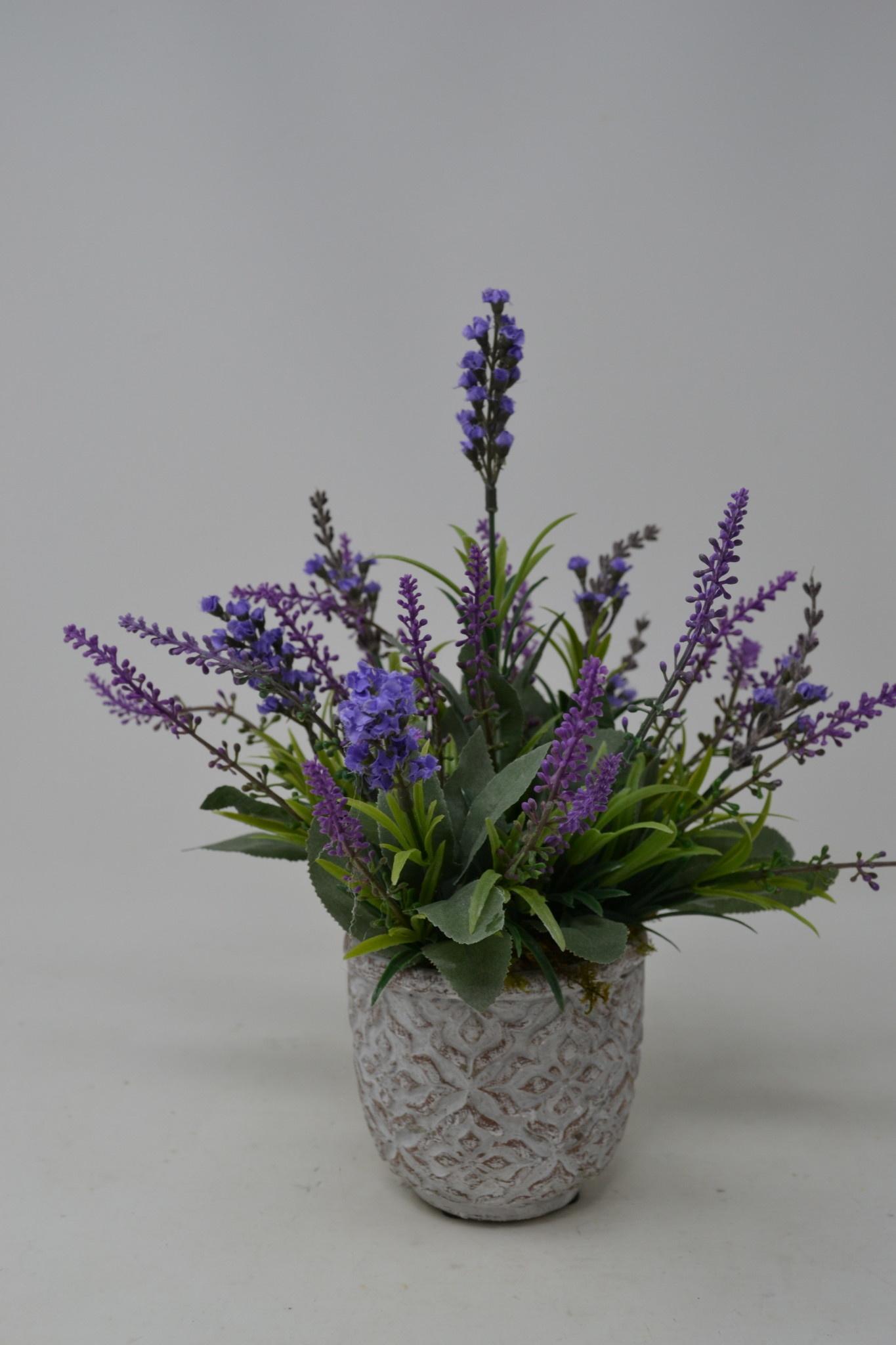 Custom Lavender In Patterned Pot Arrangement