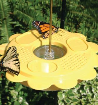 12 oz Flutterby Butterfly Feeder