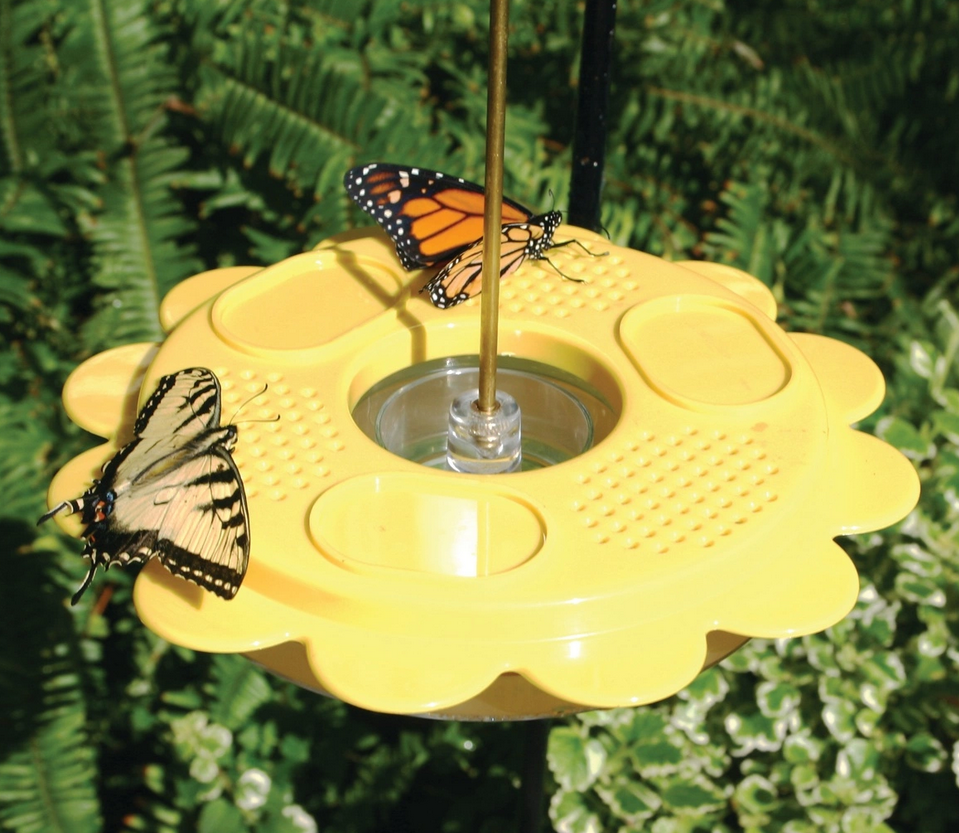 12 oz Flutterby Butterfly Feeder