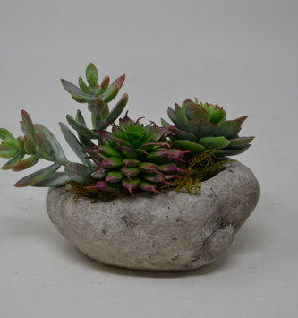 Custom Mini Succulent Arrangement In Oval Rock Container
