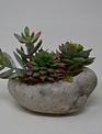 Custom Mini Succulent Arrangement In Oval Rock Container