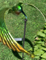 Balancing Ruby-Throat Hummingbird Stake