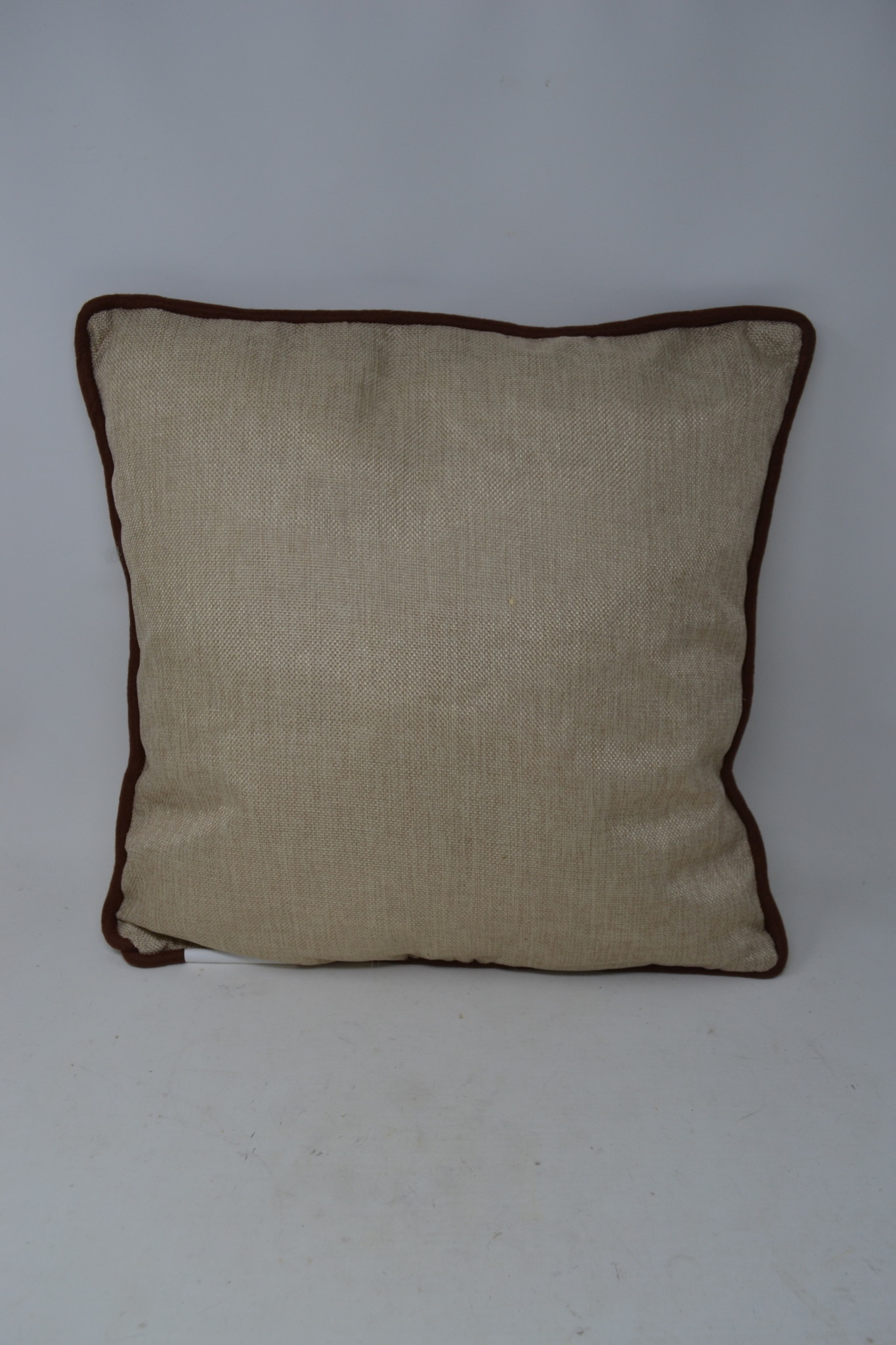Square Welcome Autumn Pillow