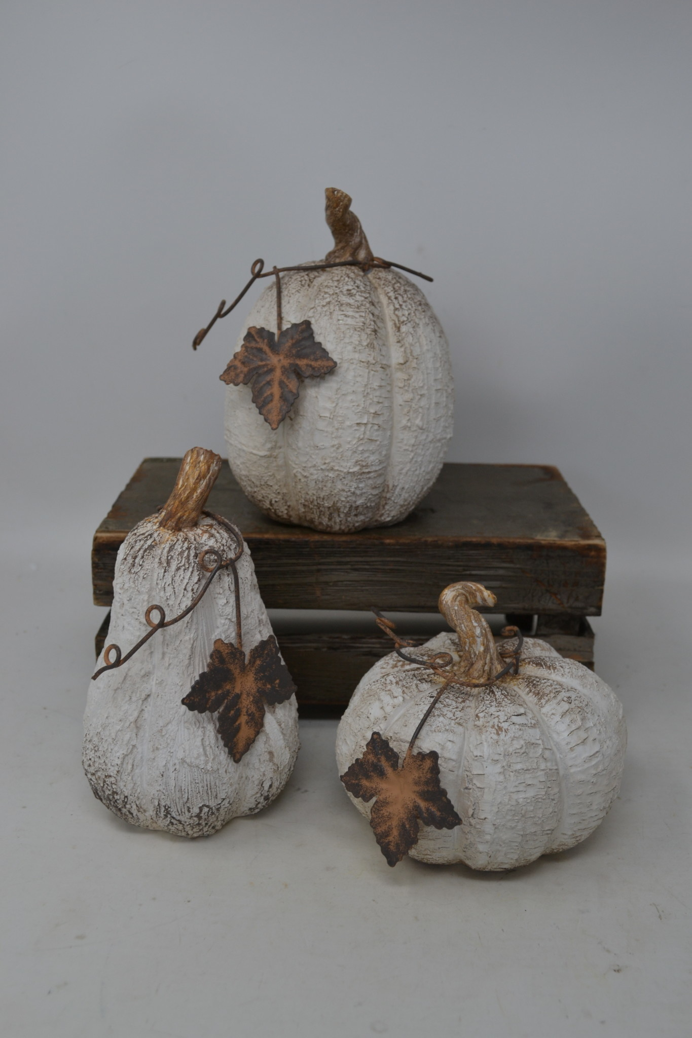 Woodgrain Whitewashed Pumpkin (3-Styles)