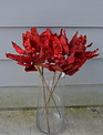 Jeweled Red Poinsettia Pick