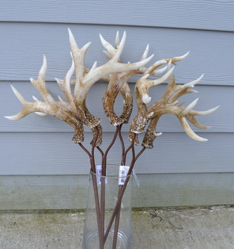 Natural Double Antler Spray