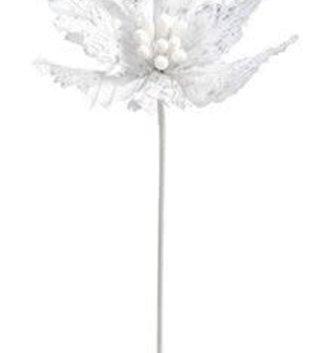 Sheer Glitz White Poinsettia