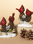 Cardinals Sitting on Pine Branch (2-Styles)