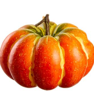 Multi-Color Speckled Pumpkin