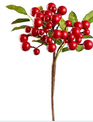 Water Resistant Red Berry Pick