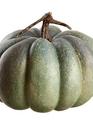 Green Gray Pumpkin
